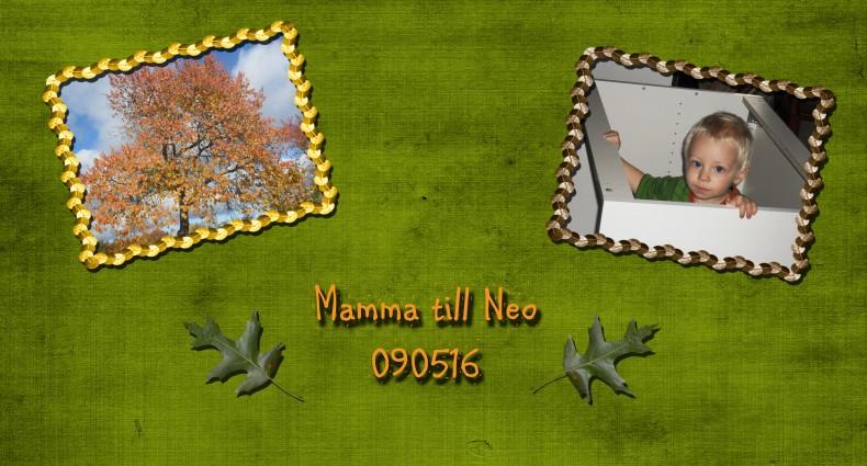 Mamma till Neo - 090516